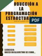 Introducción a La Programación Estructurada 1