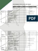 Formato-de-analisis (1)