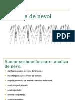 Analiza de Nevoi