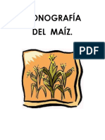 Monografia de Maiz