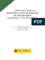 Identificacion de la familias de ACRIDOIDEA Y TETTIGONIOIDEA, orthopteros.pdf