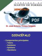 DIENCEFALO tintaya (1)