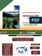 PROGRAMACION  ANUAL CTA 2012.ppt