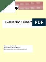 Evaluacion Sumativa 3 TMII