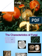 Intro to Fungi Presentation