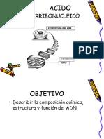 ADN Sinteis de Proteinas 3 Medio Comun