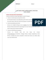 Rahmawati Tahirah_ Metabolisme Karbohidrat, Protein Dan Lemak