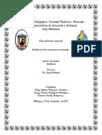 Auditoría de las operaciones-1.docx
