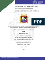 evaluacion de oca.pdf