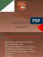 Cicatrização LIC 04-09