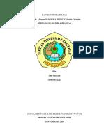 Cover & Lembar Pengesahan, Lembar Konsul
