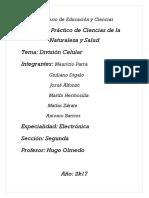División Celular 1