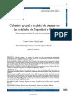Cohesión grupal y espíritu de cuerpo en.pdf