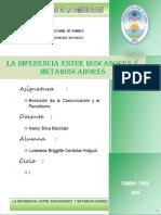 BUSCADORES Y METABUSCADORES.docx
