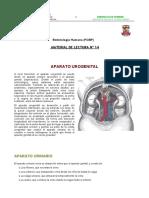 SEMINARIO 6 APARATO_UROGENITAL.pdf