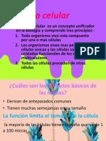 Presentación2 1