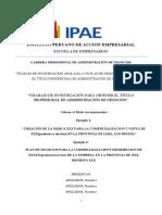 Estructura Plan de Negocios (1)