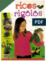 bricolagess.pdf