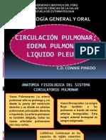 6 Clase - Circulación Pulmonar
