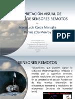 EXPO INTERPRETACIÓN VISUAL DE IMÁGENES DE SENSORES REMOTOS.pdf