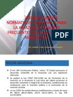 Ultimos Cambios a La Ley de La Amazonia (2)