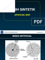 Artificial Seed