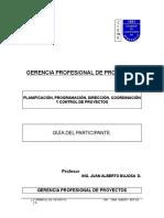 1 Diplomado Gerencia Profesional de Proyectos 2017