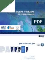2015 - Plumas Térmicas y Salinas en El Medio Marino