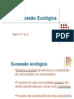 sucesso-ecolgica-1207070089557651-2