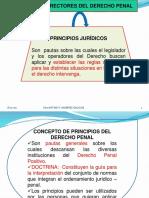 2. Principios Rectores Del Derecho Penal