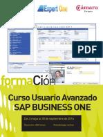 Catálogo 'SAP Business One'