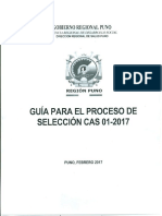 04 Guia de Proceso de Seleccion Cas 01 2017