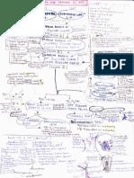 anatomy - lymphatic drainage handwritten notes.pdf