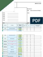 Matriz de Riesgo Formato Basico