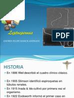 diapositivasleptospirosis1-100505235940-phpapp01