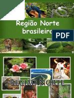 Region Norte Brasil