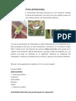 Psitacosis (Clamydia Psittaci)