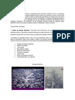 downloadfile-50.doc