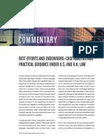 Best Efforts.pdf