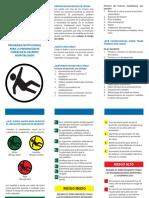 320561956-TRIPTICO-CAIDAS.pdf