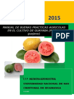 Buenas Practicas Agricolas de Guayaba-grupo Martes-2-5 Pm