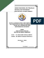 Tesis Doctorado - César Yrupailla Montes