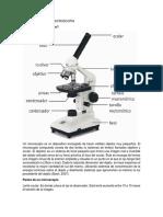 Marco Teórico de Microscopia