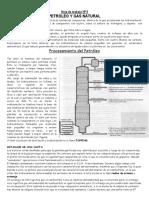 Ficha 5 Petróleo y Gas Natural 2012