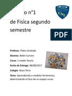 Trabajo Fisica BelenCarraroPiña.docx