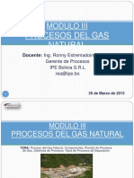 Modulo III Proceso de Gas Natural y Plantas
