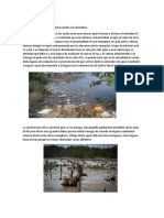 Antecedentes Historicos Contaminación Cienaga