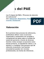 ETapas Del PAE