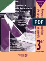 Programa La enseñanza en la escuela secunadria cuesiones básicas II.pdf