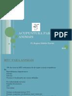 ACUPUNTURA+VETERINÁRIA+AULA+RSB.pptx